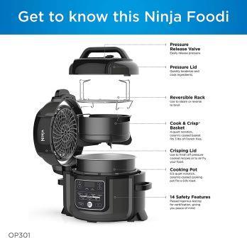 Ninja Foodi OP301 review